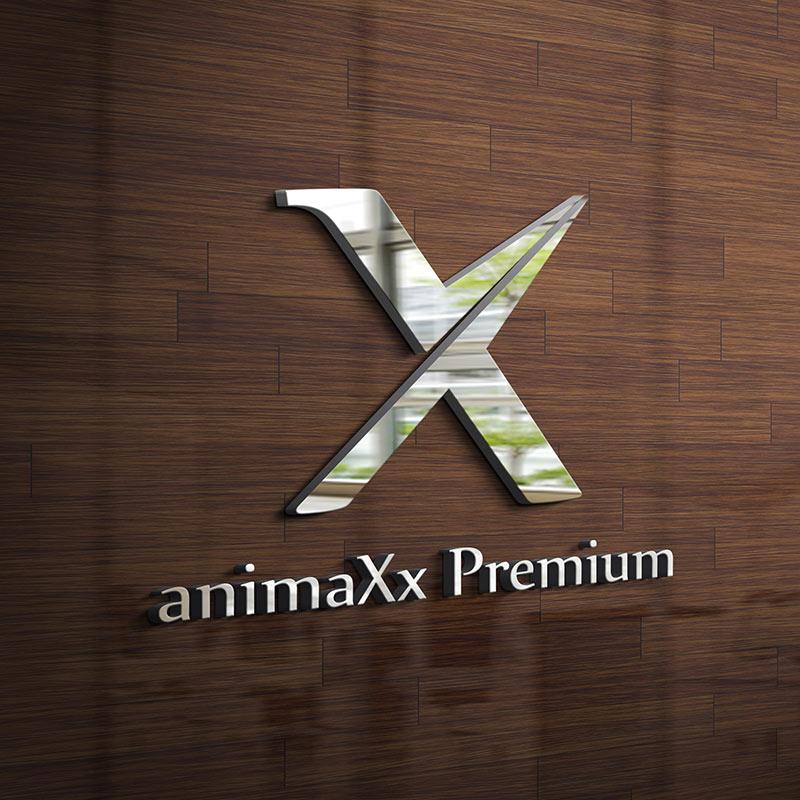 stargeckos_referencia_animaxx_premium_logo_keszites_latvanyterv_1