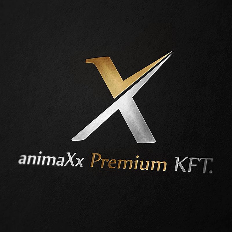 stargeckos_referencia_animaxx_premium_logo_keszites_latvanyterv_6